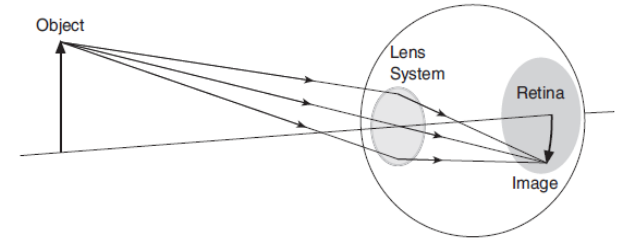 Distantele focale