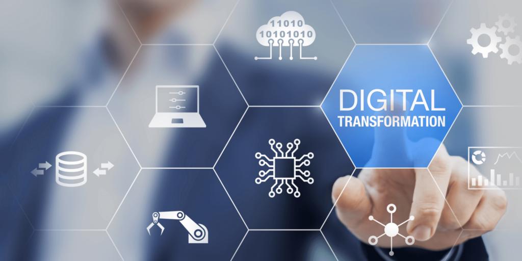 transformarea digitala profesionisti